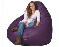 Giant Purple Beanbag